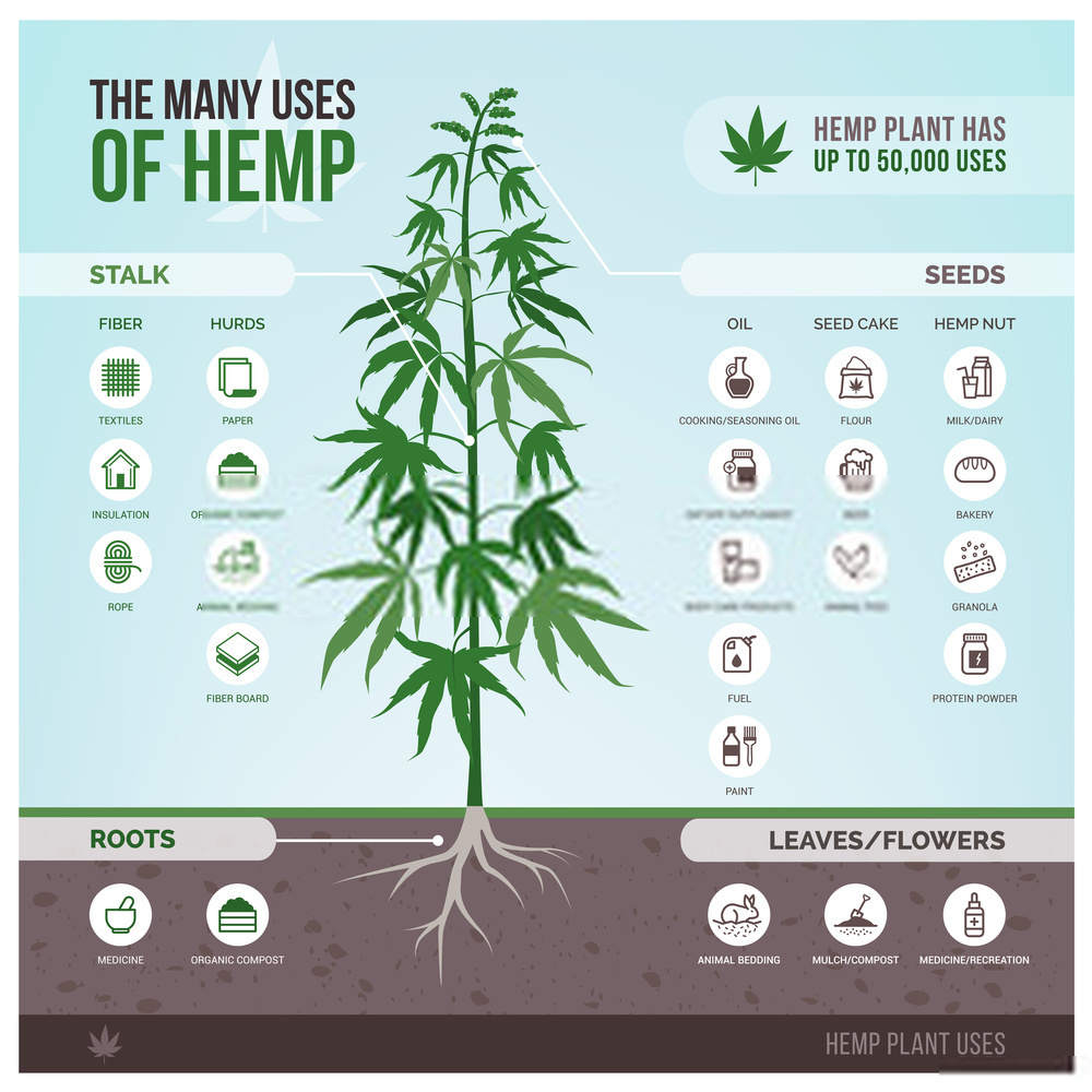 Commercial Uses of Hemp